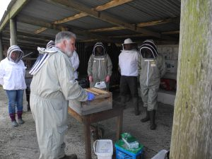 KBKA Kennet Beekeepers Association