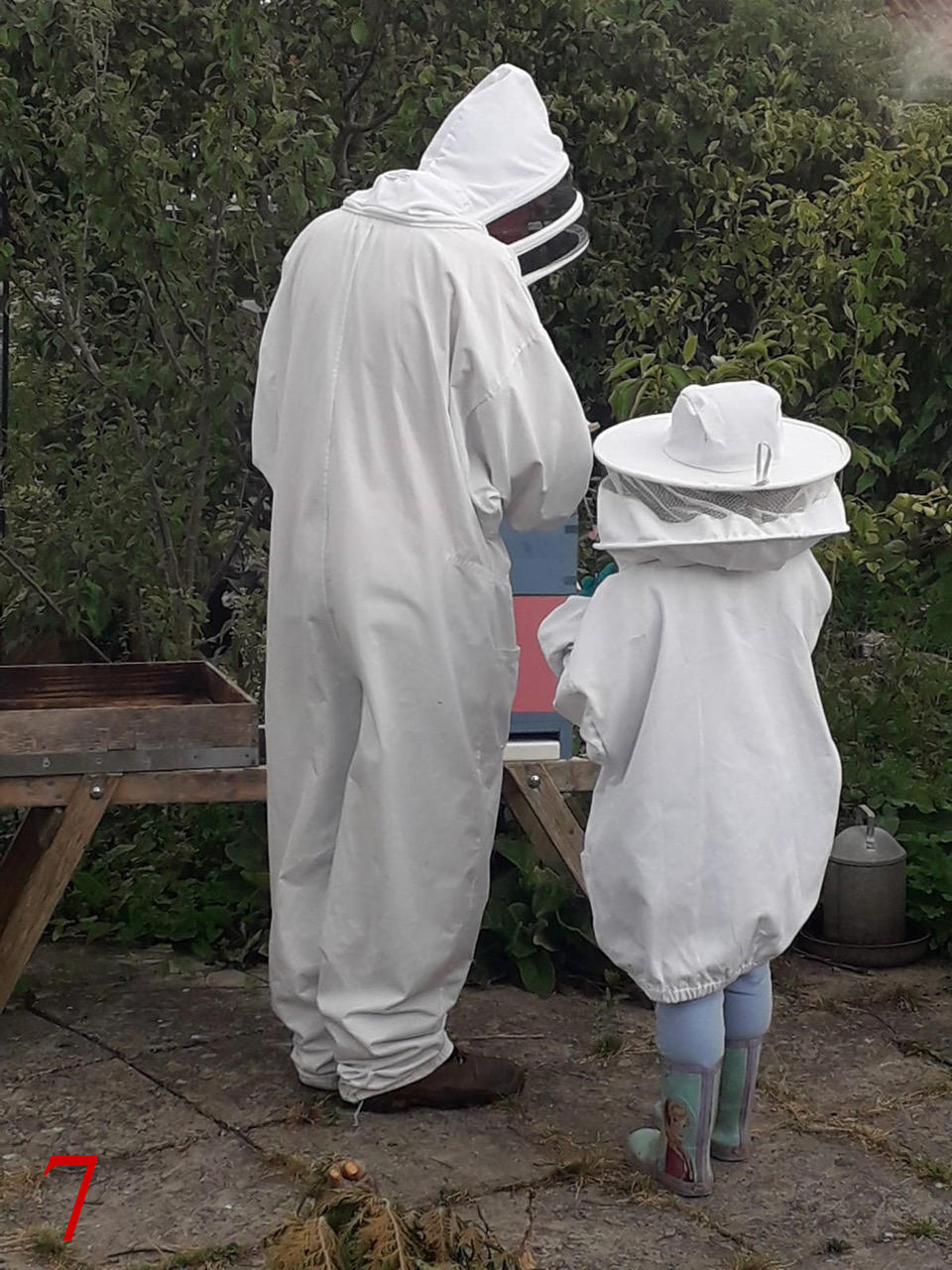 Art of Beekeeping 7