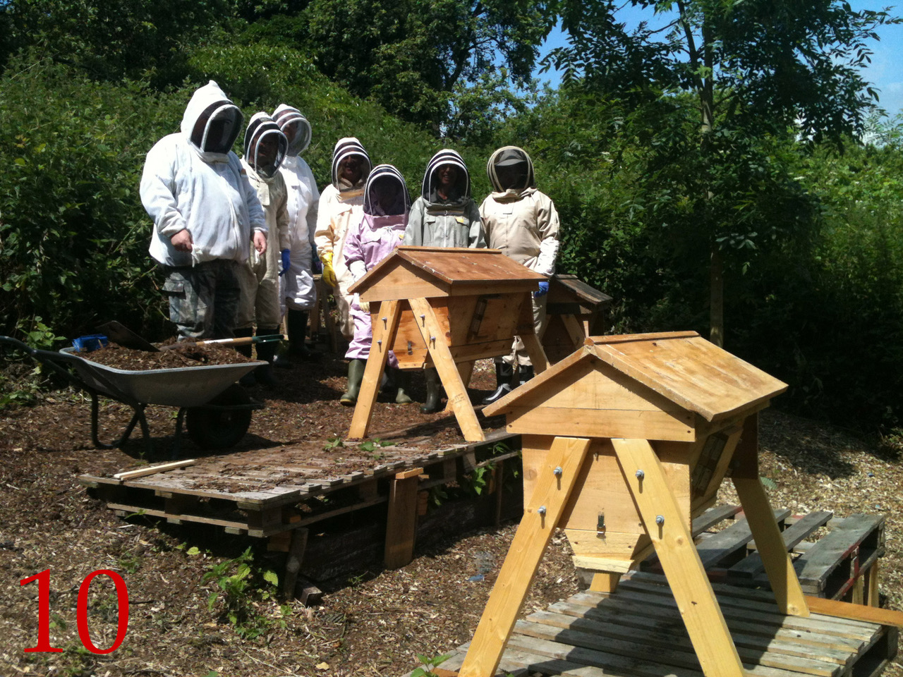 Art of BeeKeeping 10