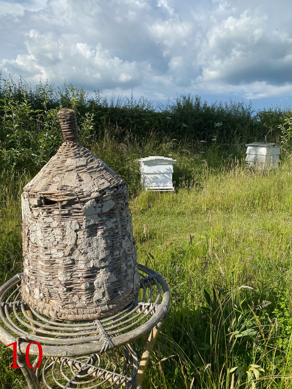 Best unusual beekeeping 10