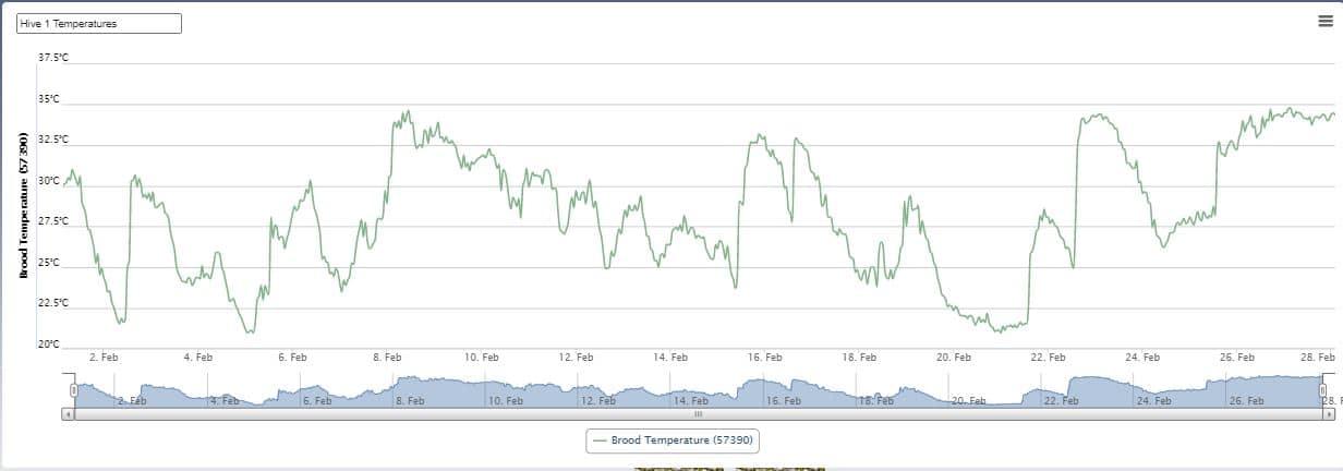 Hive 1 - Temperature (Feb 21)