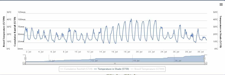 Apiary Temperature (Jul 21)