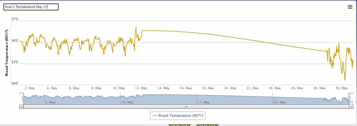 Hive 2 - Temperature (May 21)